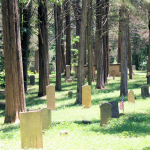 Asbury Cemetery in Calloway County